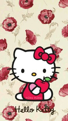 Hello Kitten, Hello Kitty My Melody, Hello Kitty Pictures, Kitty Images, Betty Boop Pictures, Hello Kitty Wallpaper, Cartoon Wallpaper, Cute Wallpapers, Kawaii