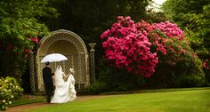 Bride & Groom photographed in our stunning gardens