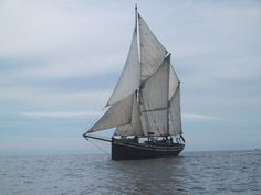 Noreg: Seladon. I have sailed upon this boat. I have met the North Sea and have been changed.