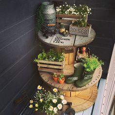 Porch Garden, Garden Art, Garden Design, Backyard, Patio, Rustic Gardens, Foliage Plants, Cacti And Succulents, Garden Styles