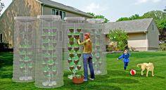 Pet-Tree, invernadero de cultivo en vertical que reutiliza las botellas de plástico PET