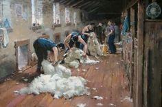 Peter Beadle - Shearing the Merinos, Shrek County, Central Otago.
