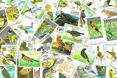 BIRDS - Lot of 50 used/MNH different stamps