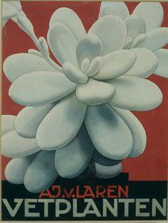 Cover van het #Verkade plaatjesalbum #Vetplanten