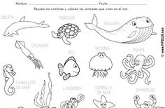 Discovering The World Through My Son's Eyes: Spanish Home Lessons: Ocean Animals (Animales del Océano)