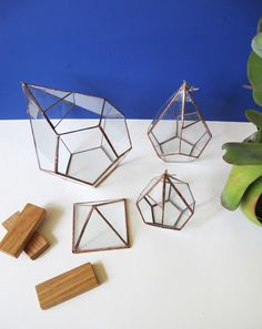 ABJ Glassworks terrariums