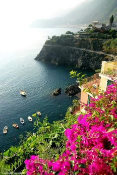 culturalexpedition:  Italy's Coasth A rewarding view to stop and enjoy as we reached the top of our Cinque Terre village, hiking up many steps and through narrow alleys for the breathtaking scene.