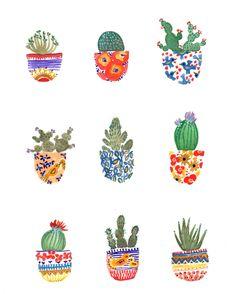 Cactusjes! :3