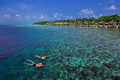 Snorkeling in the Maldives