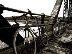 Old Cedar Ped Bridge Restoration