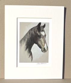 Drum Horse Art Signed Matted Print By Cori Solomon