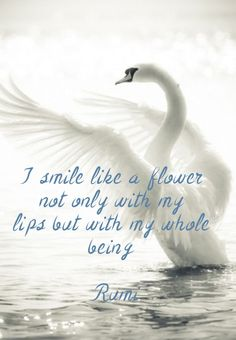 I smile like a flower not only with my lips but with my whole being rumi
