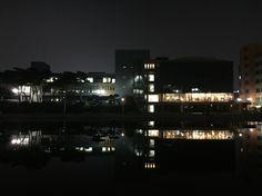 What a romantic campus! Hanyang Univ. ERICA Campus at night.
