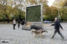 Connected trees will be scrubbing the air in a city near you soon