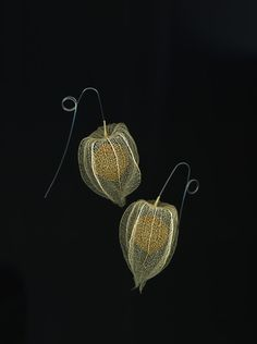 Lantern earrings, synthetic sculpture, Nora Fok. These look like cape gooseberries to me, not lanterns.