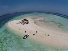 Taka makassar island, Flores