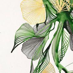 www.illustratingrain.com Botanical Art, Botanical Illustration, Illustration Art, Silk Painting, Painting & Drawing, Watercolor And Ink, Watercolor Paintings, Alcohol Ink Art, Leaf Art