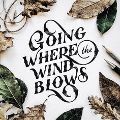 Going where the #wind blows with @markvanleeuwn #handmadefont