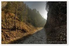 Autumn hiking trail in the Pieniny Mountains. #Poland