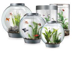 BiOrb Aquariums
