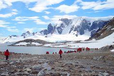 peninsula - Antarctic