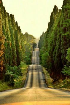 Travel photos from Italy. Rolling hills in Tuscany, Italy photo via cajun Beautiful Roads, Beautiful Places, Wonderful Places, Beautiful Beautiful, Beautiful Hotels, Amazing Places, Places To Travel, Places To See, Travel Destinations