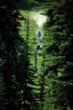 Mountain biking <3