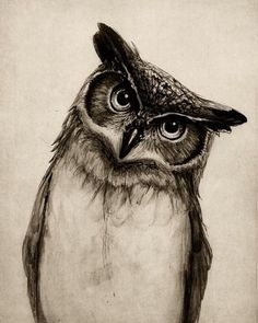 If I could get an amazing tattoo artist to do this on my shoulder I would be the happiest girl alive!