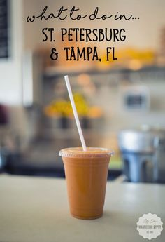 Fun Thing To  Do In St. Petersburg & Tampa, FL!! by Lily The Wandering Gypsy