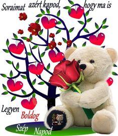 Rose, Teddy Bear, Facebook, Pink, Teddy Bears, Roses