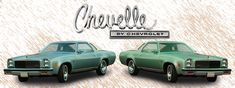 An Orginal Brochure For The 1973 Chev Chevelle 1973 Chevelle, Unique Cars, Performance Parts, Chevrolet, Classic Cars, Autos, Vintage Classic Cars, Classic Trucks