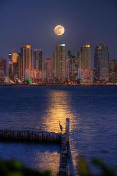 San Diego Bay, California @ Night