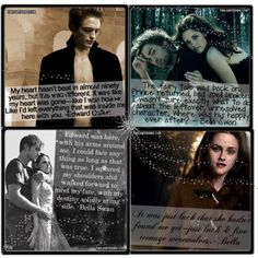 I have no problem admitting how much I love The Twilight Saga.