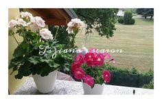 Inizio estate #PicsArt  Crea il tuo gratuitamente https://bnc.lt/f1Fc/dy2wFUW13n