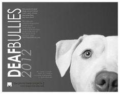 Deaf Bullies Calendar 2012