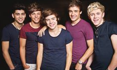 the 5 beautiful men band, One Direction