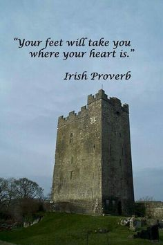 Irish proverb >> It brought me home to Chile after 11 years of being lost in Canada