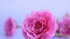 Como fazer rosas com papel crepom