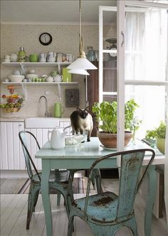 Summer style!! Cozy Nordic style kitchen with a wonderful cat too!