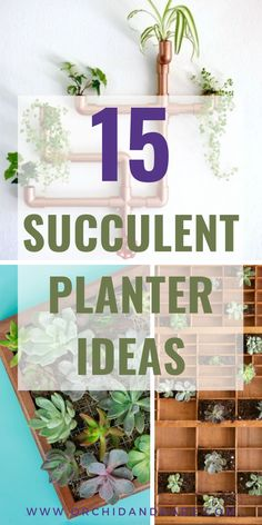 15 UNIQUE Succulent Planter Ideas - Creative DIY indoor succulent planters made from wood, concrete, PVC and more. Wall-mounted and hanging planters, plus original vertical garden ideas. Indoor Succulent Planter, Vertical Succulent Gardens, Hanging Succulents, Indoor Planters, Diy Planters, Succulents Diy, Planter Ideas, Succulent Gardening, Indoor Gardening