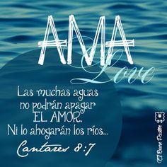 Cantares 8:7 Las muchas aguas no podrán apagar el amor, Ni lo ahogarán los ríos.♔