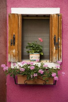 18 Eye-Catching Gardening Ideas for Window Boxes