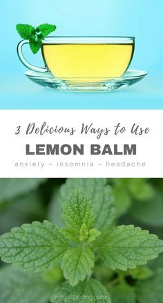 3 Delicious Ways to Use Lemon Balm for Anxiety, Insomnia, Headache & More via @thesoftlanding