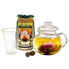 Primula Glass Teapot Set