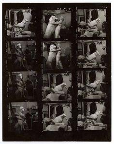 Marilyn Monroe Contact Sheet shot by Avedon