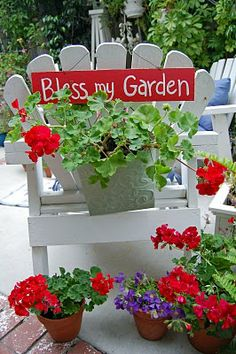 .Love red geraniums