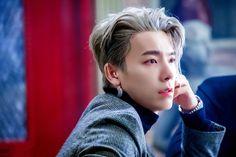 Kim Ryeowook, Cho Kyuhyun, Leeteuk, Choi Siwon, Lee Donghae, Super Junior Donghae, Dong Hae, Last Man Standing, Korean Bands