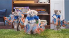 Adorable Cats Play a Heated Game of Football Against Cute Puppies in 'Puppy Bowl'