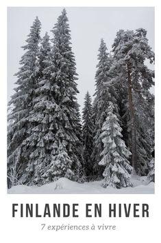 Que faire en Finlande en hiver? Je vous propose 7 idées d'activités et expériences dans le centre de la Finlande (région de Jyvaskyla), toutes testées et approuvées, et vous donne quelques bonnes adresses. Pas besoin d'aller en Laponie pour découvrir des activités hivernales uniques, comme le fatbike ou l'arctic floating! #europe #voyage #hiver #finlande #aventure #jyvaskyla