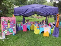 Butterfly themed party set-up